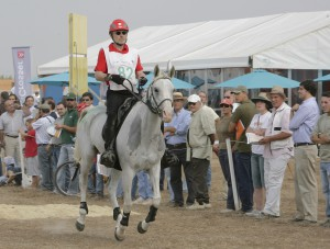 Portugal EM 2007